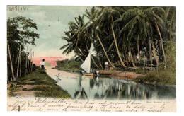 TRINIDAD - Hart's Cut, Pionnière - Trinidad