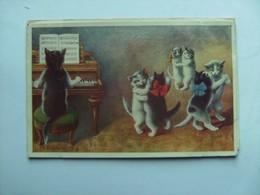 Poezen Katten Cats Chats Katzen Öhler Music And Dancing - Geklede Dieren