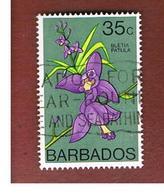 BARBADOS - SG 495  -   1974 FLOWERS: ORCHIDS (BLETIA PATULA)  -  USED° - Barbados (1966-...)