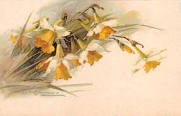 """0299 """"CATERINE KLEIN - NARCISO""""   CART  NON SPED - Fleurs"""