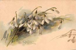 "0301 ""CATERINE KLEIN - CAMPANELLE BIANCHE""   CART  NON SPED - Fleurs"