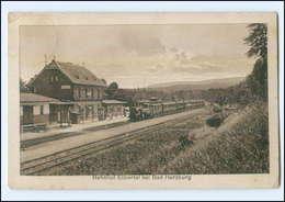 XX01127-3388/ Bahnhof Eckertal Bei Bad Harzburg Mit Eisenbahn Ak 1920 - Unclassified