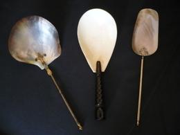 Konvolut (3) Vorlage-Löffel  (mit Muschelschalen)  (536) - Cuillers