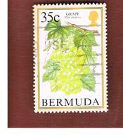 BERMUDA - MI 661   -   1994 FRUITS: GRAPE                        -   USED° - Bermuda