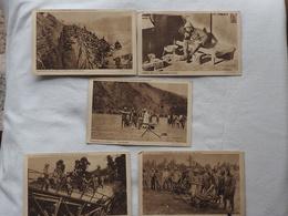 5 Cards Documentation Du Ministere Des Colonies De Belgique  A 180 - Belgique