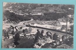 San Dalmazzo Di Tenda  - Valle Roia - Passaggio Del Treno Di Nizza - Cuneo