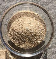 MESSICO  COZUMEL  SABBIA  CORALLINA - Sand