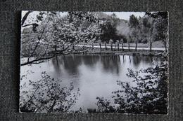 BRUYERES - Lac De Pointhaie - Bruyeres