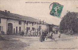 55-BRIEULLES-sur-MEUSE -Rue Du RUISSEAU-BELLE ANIMATION Dans COUR De FERME-Edit. LAVIGNE-HUSSON-Ecrite-Timbrée 15/9/1909 - Francia