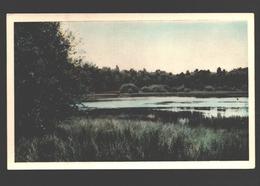 Oisterwijk - Klein Aderven - 1960 - Gekleurd - Pays-Bas