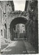X3881 Assisi (Perugia) - Caratteristica Via Medioevale / Viaggiata 1958 - Italia