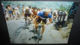 Carte Postale : 1984, Laurent Fignon Malmène Bernard Hinault (vélo - Cyclisme) - Ciclismo