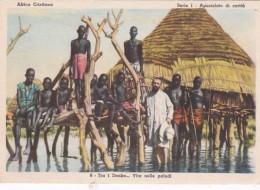 Missions Africa Cristiana Tra i Denka Vita nelle paludi