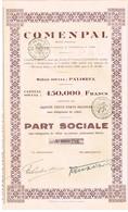 Action Ancienne - Comenpal - Titre De 1946 - Rare - Industrie