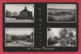 Torgny - Un Bonjour De ... - Carte Multivues ( Voir Verso ) - Rouvroy
