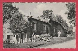 Torgny - Rue De L'Ermitage ... Habitat Typique  - 1965 ( Voir Verso ) - Rouvroy