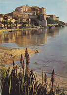 Haute Corse,calvi,capitale économique De La Balagne,port - Calvi