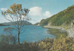 Loch Moidart, Inverness-shire, Scotland - Posted With Stamp - Inverness-shire