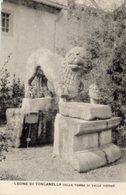 Firenze - Cartolina LEONE DI TOSCANELLA, GIARDINO (marcato 17 Serie E) R. M. Archeologico - PERFETTA P72 - Sculture