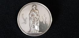 Médaille ( Montée En Broche ) COMICE AGRICOLE DE JONZAC 17 Charente Inférieure ( Maritime ) Graveur BRENET - France