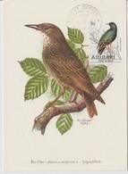 Aitutaki Carte Maximum 1981 Oiseaux 278 - Aitutaki