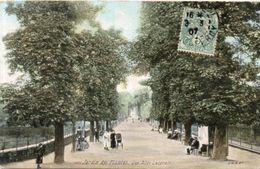 PARIS - Jardin Des Plantes - Une Allée Latérale  (109260) - Unclassified