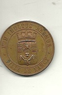 Monnaie Médaille  Ville De Nancy  école Des Beaux Arts  1er Prix R GUERITOT 1907 - Coins (pictures)