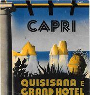 Anc. Etiquette D'Hôtel /de Bagages -Vintage Luggage Label-  ITALIE - QUISISANA E GRAND HOTEL à CAPRI Illustr.par ZAN - Etiquettes D'hotels