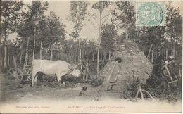 En Forêt.Une Loge De Charbonniers - France