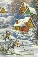 Carte Meilleurs Voeux Bonne Année - Neige, Maisons, Oiseaux - Anno Nuovo