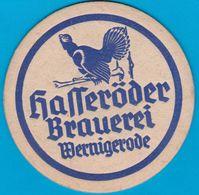 Hasseröder Brauerei Wernigerode-Hasserode ( Bd 566 ) - Sotto-boccale