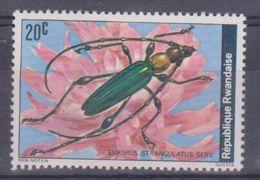 1978 Rwanda - Coleotteri - Rwanda