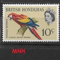 BRITISH HONDURAS   1962 -1967 Birds   MNH Ara Macao - Honduras Britannique (...-1970)