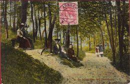 Domburg In De Bosschen Bij 1911 Chromatografie Zeeland - Domburg