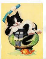 Postcard - Bathtime By Andrew Farley  - Unused - Very Good - Postales