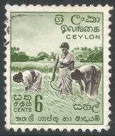 Ceylon. 1958-62 Definitives. Redrawn Inscriptions, 6c Used. SG 452 - Sri Lanka (Ceylon) (1948-...)