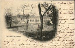 34 - MONTPELLIER - Jardin Des Plantes - Carte Nuage - Montpellier