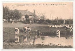 Pontailler Sur Saone - La Ferme Du Pasquier Du Bois - Laveuses -   CPA° - France