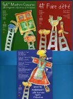 Aosta - Fiera D'Estate Dell'Artigianato Tipico Valdostano. Anno 2009 - 3 Cartoline .  Vedi Descrizione, - Manifestazioni