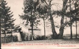 Bastogne Pensionnat Des Soeurs De Notre Dame Un Coin Du Jardin - Bastogne