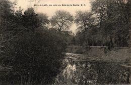 LILLE -59- UN COIN DU BOIS DE LA DEULE - Lille