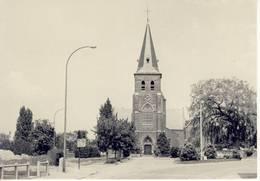Loksbergen Halen St.-Andreaskerk Kerk - Halen