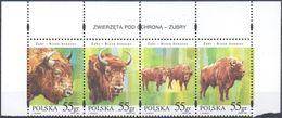 Polen - MiNr. 3629-32 - Wisent (ZSD) - Postfrisch - Wild
