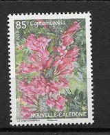 Nouvelle-Calédonie N° 1193** - Nuevos