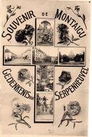 Scherpenheuvel - Gedenkenis Van SERPENHEUVEL (Drukfout Op De Kaart)  1924 - Scherpenheuvel-Zichem