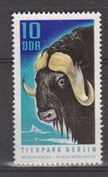 Duitsland Allemagne Deutschland Germany DDR MNH ; Buffel, Buffelo, Muskusos - Koeien