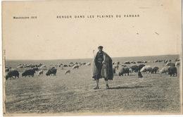 Macedoine  1916 Berger Dans Les Plaines Du Vardar  Edit Le Deley - Macédoine
