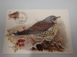 2792 Kramsvogel Getekende Kaart Buzin Stempel PDL 2/08/1999 - 1985-.. Birds (Buzin)