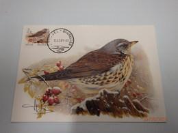 2987 Kramsvogel Getekende Kaart Buzin Stempel PDL 26/03/2001 - 1985-.. Birds (Buzin)