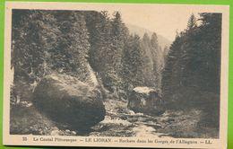 Le Cantal Pittoresque - LE LIORAN - Rochers Dans Les Gorges De L'Allagnon - Sonstige Gemeinden